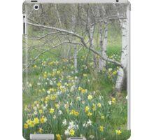 Daffodils and Birches iPad Case/Skin