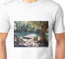 Beautiful River Jordan Unisex T-Shirt