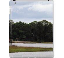 Princess Plantation 13 iPad Case/Skin