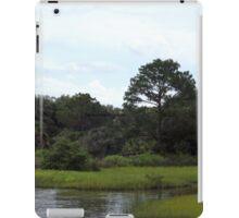 Princess Plantation 14 iPad Case/Skin