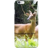Princess Plantation 18 iPhone Case/Skin