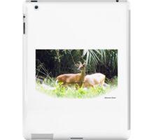 Princess Plantation 18 iPad Case/Skin