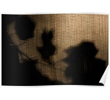 Late Afternoon Shadows Poster