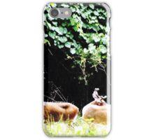 Princess Plantation 20 iPhone Case/Skin