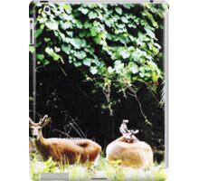 Princess Plantation 20 iPad Case/Skin