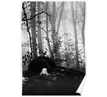 Gothic Forest 2 Poster