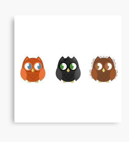 Owly Potter Metal Print