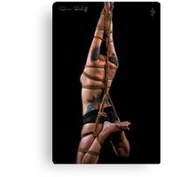 Elongated Suspension Rope Canvas Print