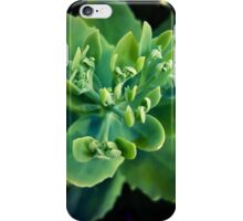 Leafage iPhone Case/Skin