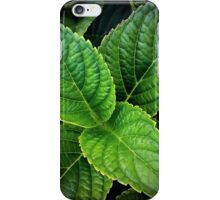 Leaf Me Alone iPhone Case/Skin