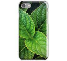 Leaf Me Alone iPhone Case/Skin