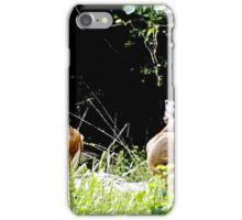 Princess Plantation 30 iPhone Case/Skin
