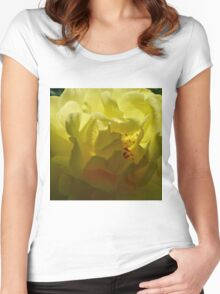 Sunrise Sunset Shrub Rose Women's Fitted Scoop T-Shirt
