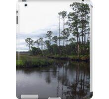 Princess Plantation 32 iPad Case/Skin