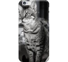 Brandi iPhone Case/Skin