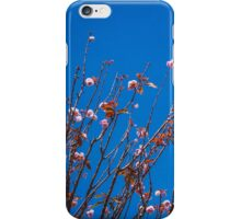 San Francisco Flowers iPhone Case/Skin