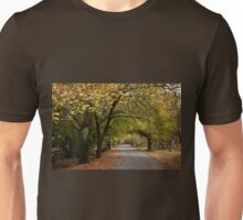 Along the Laneway _ Hill End Unisex T-Shirt