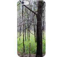 Abandoned By Matthew Lys iPhone Case/Skin