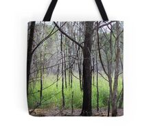 Abandoned By Matthew Lys Tote Bag