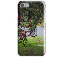 Dropping Down By Matthew Lys iPhone Case/Skin