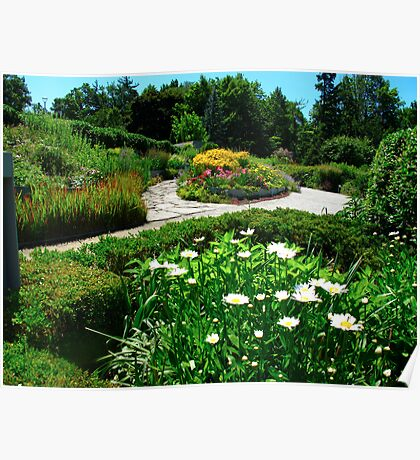 Flower patio Poster