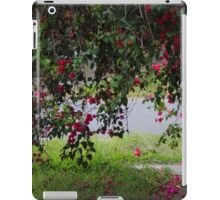 Dropping Down By Matthew Lys iPad Case/Skin