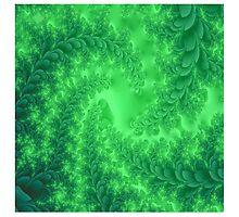 Seaweed Fractal by Melissa Park