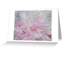 LOVELY PINK PEONY Greeting Card