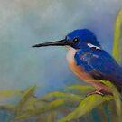 Azure Kingfisher by JulieWickham
