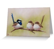 Superb Fairy-wrens Greeting Card