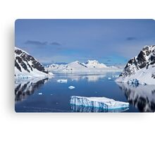 Danco Island or Isla Dedo is an island off Antarctica Canvas Print