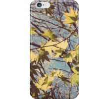 Chichester Leaves iPhone Case/Skin