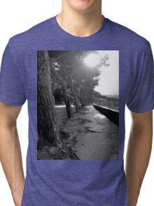 Light Through the Trees Tri-blend T-Shirt