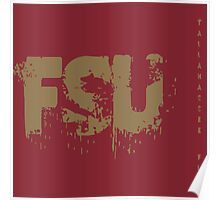 FSU Poster