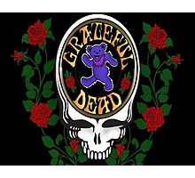 Grateful Dead Skull and Bear Photographic Print