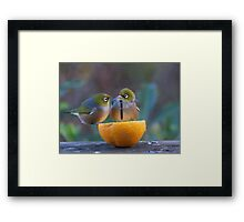 Love is.......Two on an orange......! Framed Print