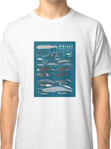 A SEA FULL OF CETACEANS: WHALES, DOLPHINS, AND PORPOISES Classic T-Shirt
