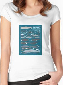 A SEA FULL OF CETACEANS: WHALES, DOLPHINS, AND PORPOISES Women's Fitted Scoop T-Shirt