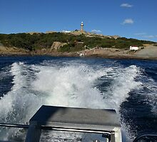 04 Montague Island Lighthouse 1 by Ash Sievwright