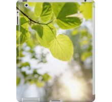 Backlit Tilia cordata Leaves iPad Case/Skin