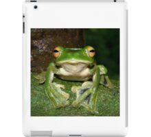 Helen's Flying Frog iPad Case/Skin