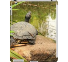 Relaxing by the Water iPad Case/Skin