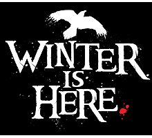 Winter is Here - Small Raven on Black Photographic Print