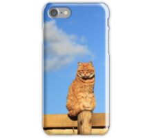 Ginger cat sat on garden fence iPhone Case/Skin