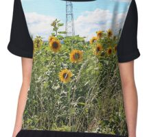 Sunflower Crop Chiffon Top