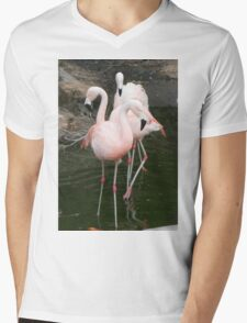 Us Flamingos Mens V-Neck T-Shirt