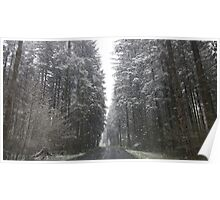 Breathtaking Snowy Forest  Poster