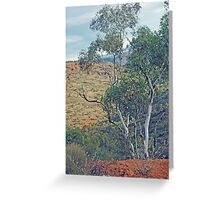 Natural Beauty - Outback in the Flinders Ranges Greeting Card