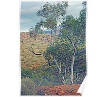 Natural Beauty - Outback in the Flinders Ranges Poster