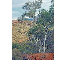 Natural Beauty - Outback in the Flinders Ranges Photographic Print